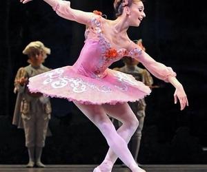 ballet, pink, and marianela nunez image