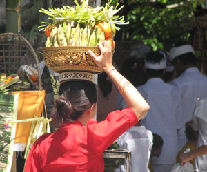 bali, offering, and tradition image