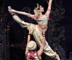 ballet, dance, and the nutcracker image