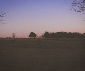 35mm, dusk, and MM image