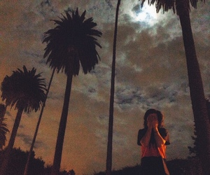 clouds, palmtrees, and dvbbs image