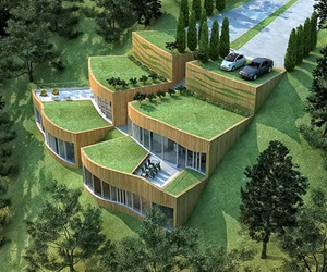 eco friendly, go green, and grass house image