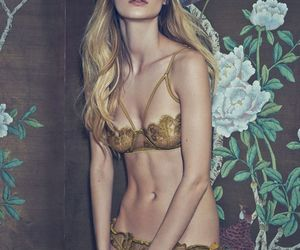 bra, gold, and lace image
