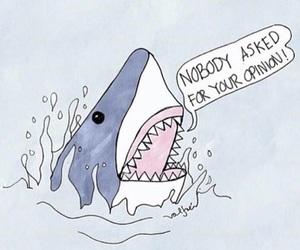 shark, opinion, and art image