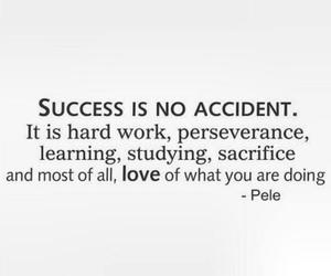 hard work, learning, and perseverance image