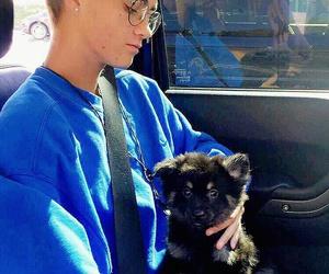 jack johnson, jack and jack, and puppy image