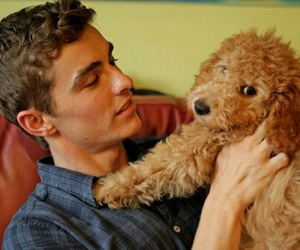 dave franco, cute, and dog image