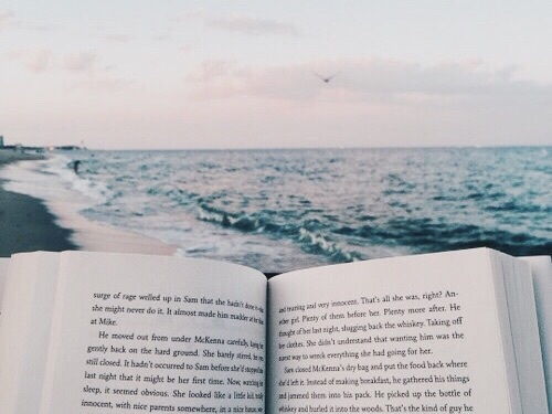 book, ocean, and beach image
