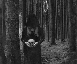 skull, forest, and dark image