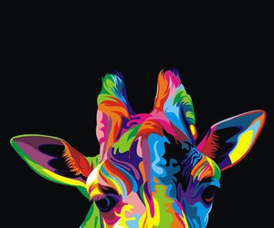giraffe and colors image