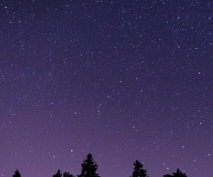 night, sky, and trees image