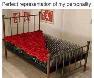 rose, bed, and red image