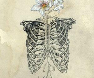 art, flower, and tumblr image