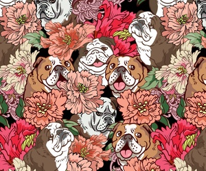 background, pattern, and dog image