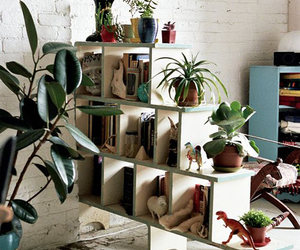 plants, book, and design image