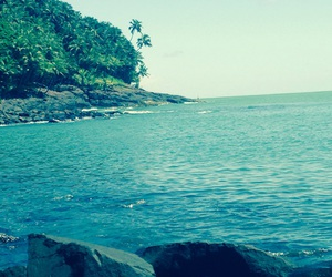 french guiana and summer image