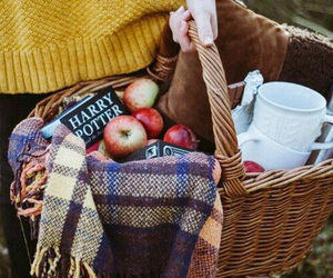 apple, picnic, and harry potter image