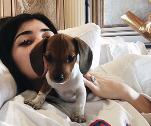 kylie jenner, dog, and puppy image