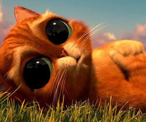katty and cute image