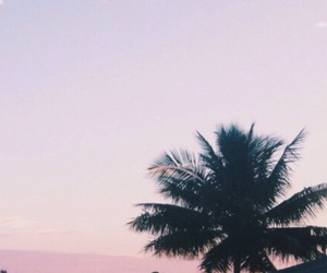 wallpaper, photography, and tumblr image