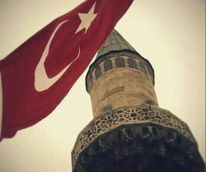 turkey, red, and white image