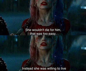 harley, suicide squad, and lové image