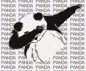 background, black and white, and panda image