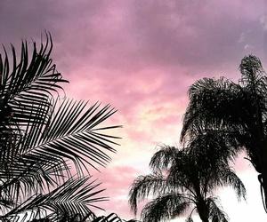 la, losangeles, and summer image