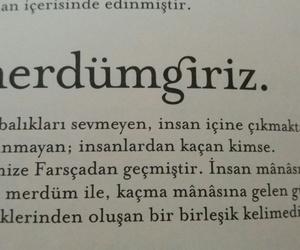 kitap, türkçe sözler, and kitap alıntıları image