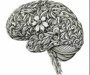 brain and drawing image