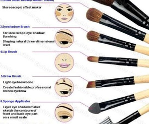 Brushes, guide, and make up image