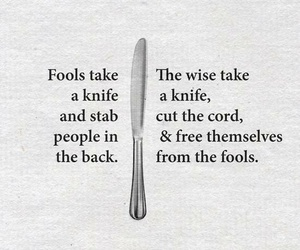 fools, quote, and free image