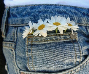 flowers, daisy, and jeans image
