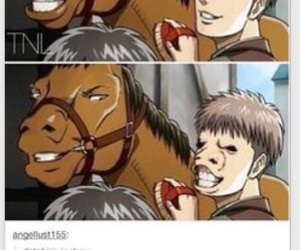 horse face and attack on titan image