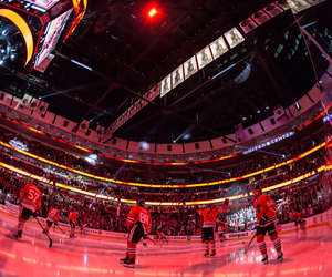 hockey and nhl image