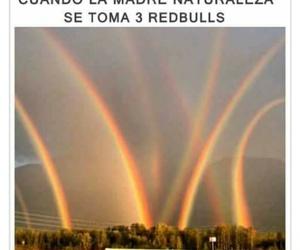 memes, redbull, and madre naturaleza image