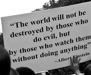 quotes, evil, and Albert Einstein image