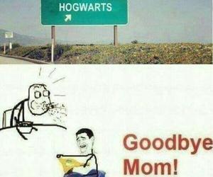 harry potter, hogwarts, and lol image