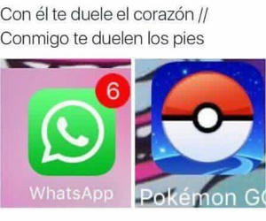 pokemon, meme, and whatsapp image