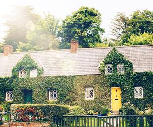 house, ireland, and ivy image