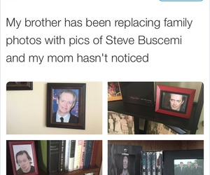 funny and Steve Buscemi image