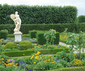 flowers, garden, and park image