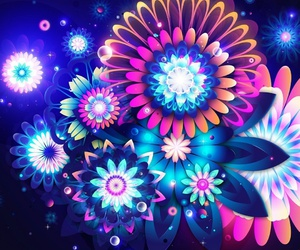 flowers, colorful, and wallpaper image
