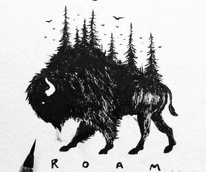 animal, art, and doodle image