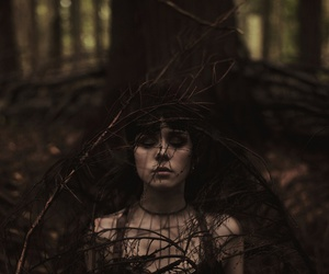 dark and forest image