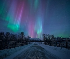 aurora borealis, sky, and travel image