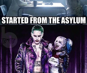 harley quinn, suicide squad, and funny image