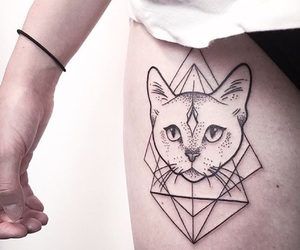 cat and tattoo image
