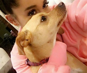 Toulouse and ariana grande image