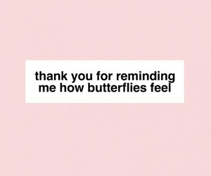 quote, butterfly, and pink image